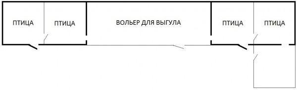 planirovka-ptichnika-2