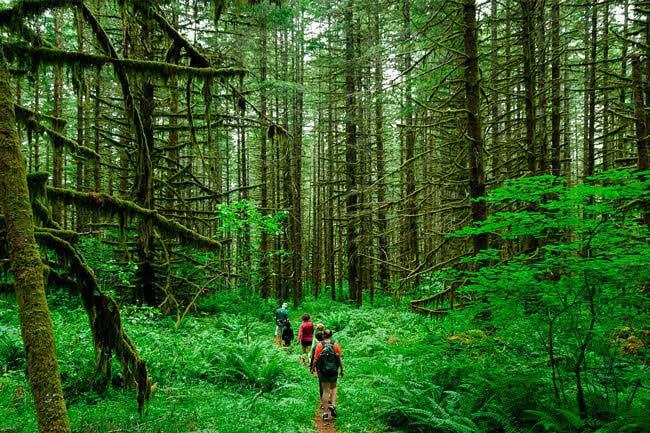 ekoturizm