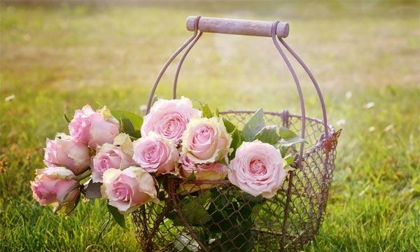 dostavka-cvetov-po-miru