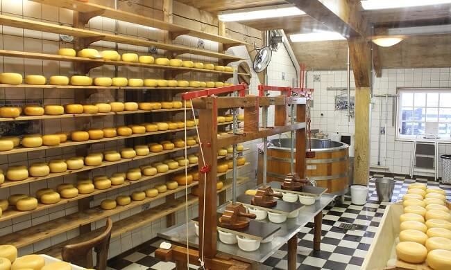 oborudovanie-dlja-proizvodstva-syra