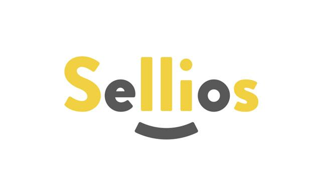 Sellios-obzor-topovogo-konstruktora-internet-magazinov