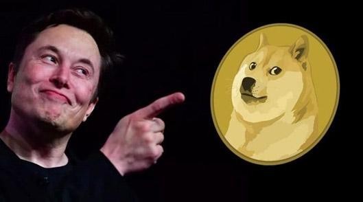 moneta-Dogecoin
