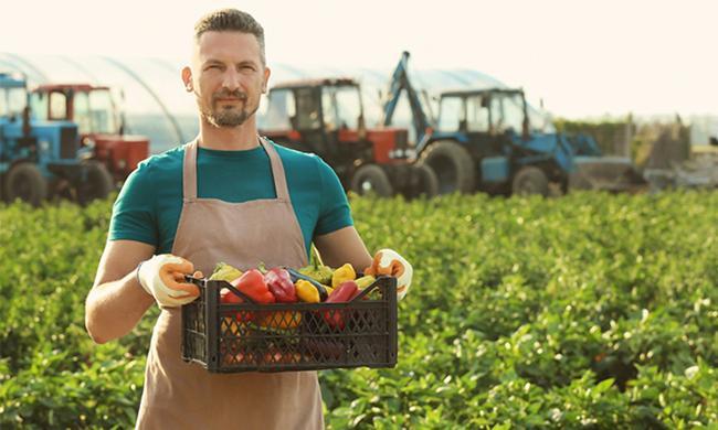 Бизнес план для начинающего фермера