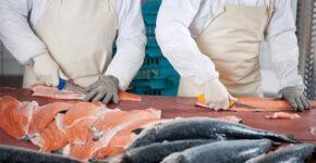 Организация рыбного цеха