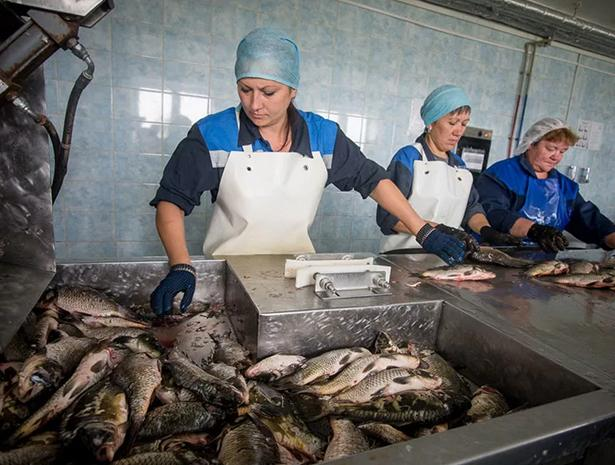 Сотрудники рыбного цеха
